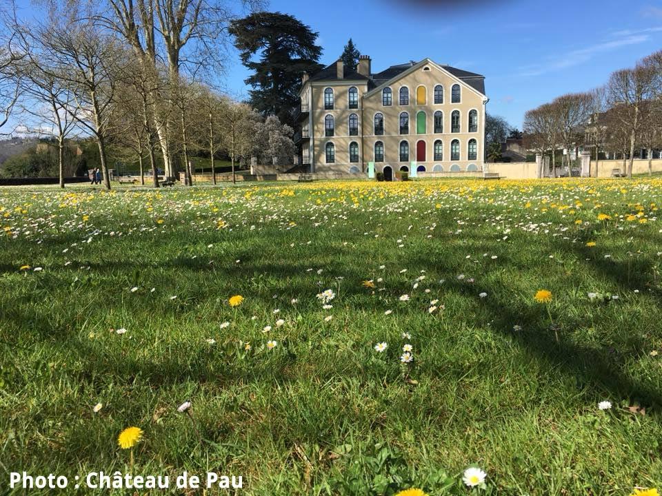 Château de Pau. Photo issue de leur page FB