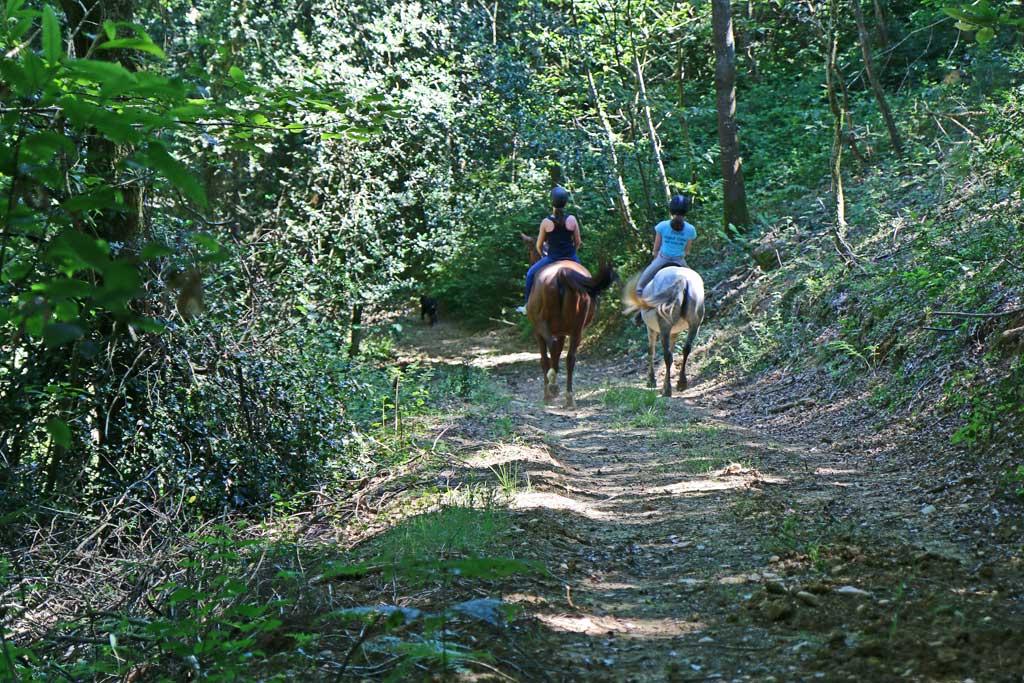 Balades équestres dans les chemins du Vic-Bilh