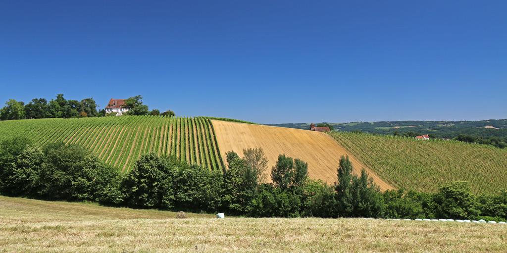 La beauté des régions viticoles