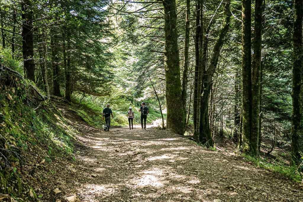 Pic d'Escurets randonnée